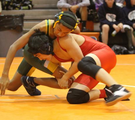 Image of Wrestling