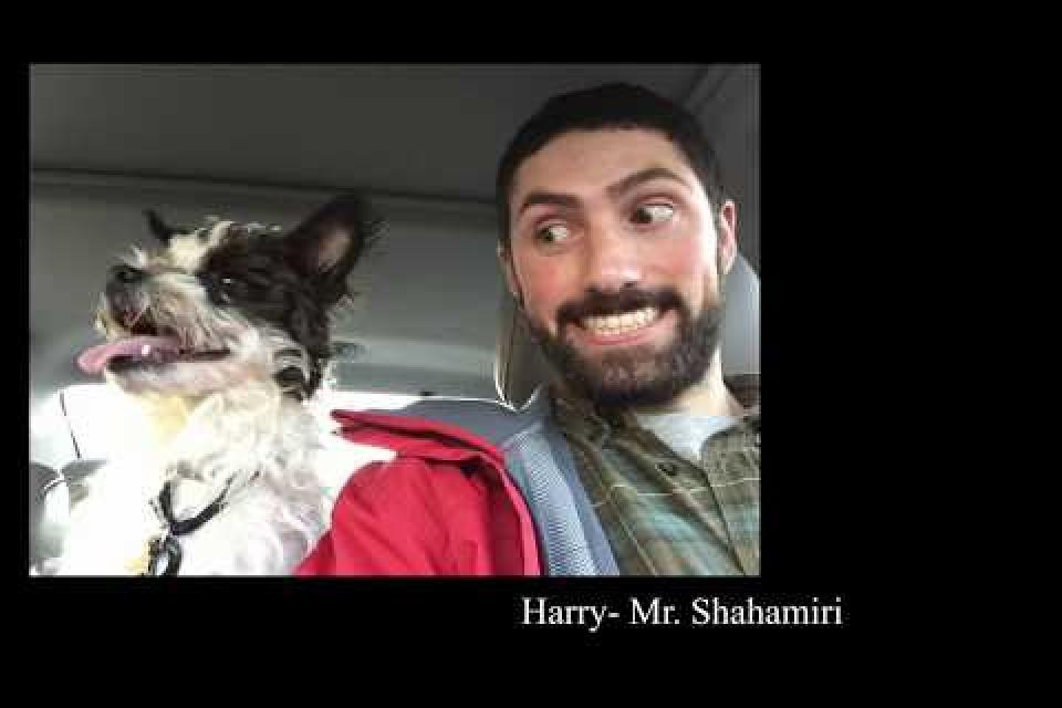 Virtual Pet Therapy