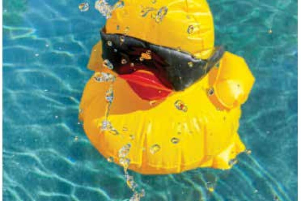 Bright yellow duck toy in a pool